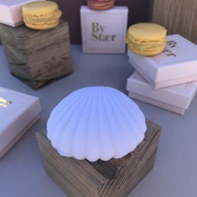 Shell Box – Earrings (white)